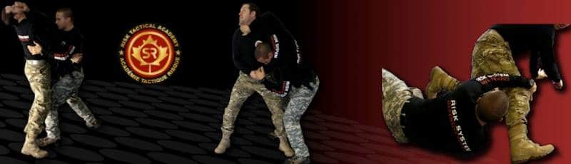 Risk System Defensive Tactics